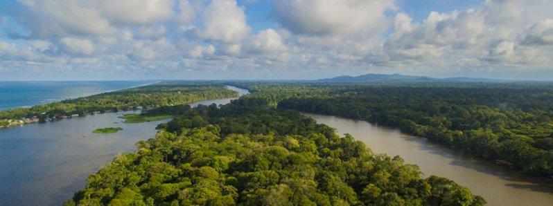 Tortuguero Costa Rica Travel Guide