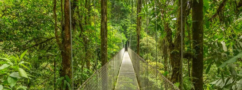 Costa Rica received world recognition during Fitur 2018
