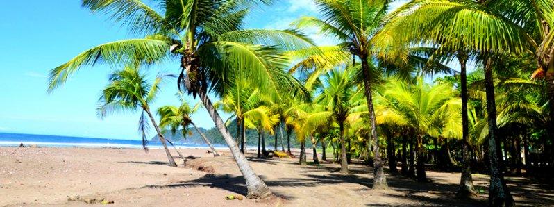 Jaco Costa Rica Travel Guide