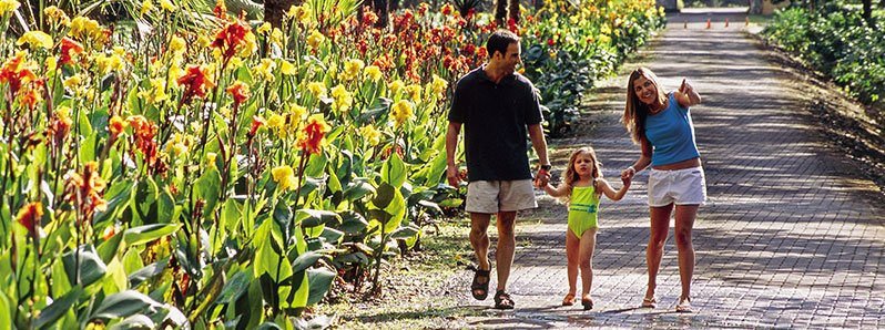 Costa Rica hotels: top family resorts and lodges to stay